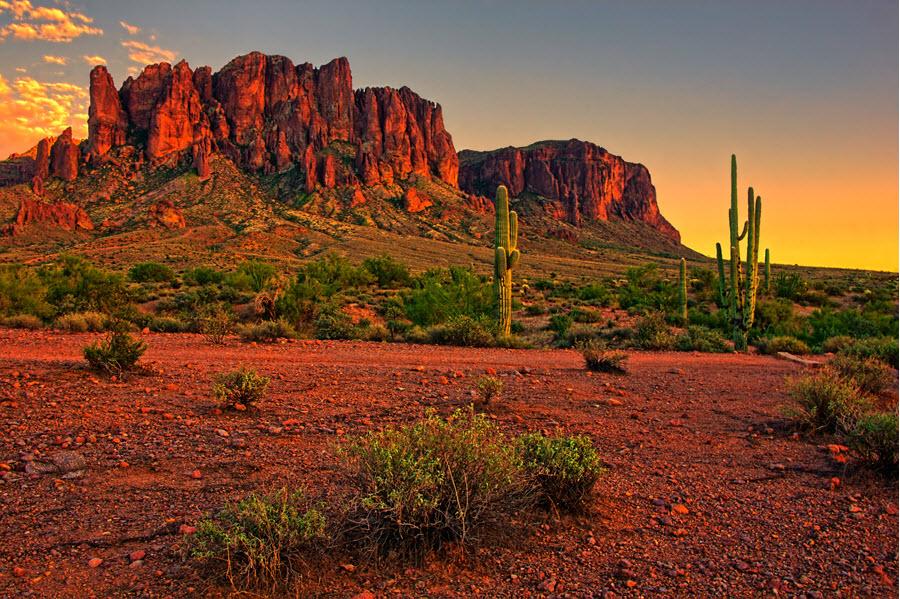 Arizona Desert Sunset.